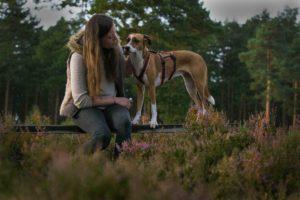 Maloutainment-Mischling-Hund-Fotografie-Huendin-Frau-Freundschaft-Fotografin-Hannover-Celle-Heide-Blumen-Niedersachen-Blog-Hundefotografie-Charakter-Beschreibung