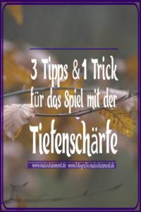 Herbstlaub Maloutainment Fotografie DIY Kreativ Handy Natur Tier Kamera Blog Niedersachsen Hamburg Tipps Tricks Hilfe Verbesserung Blaetter Unschärfe Bokeh