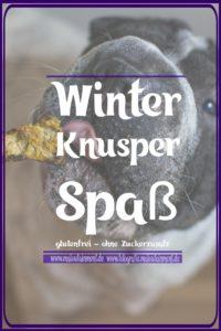 Maloutainment Fotografie DIY Essen Rezept Weihnachten Winter winterlich einfach Anleitung weihnachtlich Leckerli Futter Hund Hunde Hase ohne Zucker