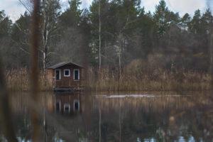 Teich See Huette Maloutainment Fotografie DIY Kreativ Handy Natur Tier Kamera Blog Niedersachsen Hamburg Tipps Tricks Weiterbildung Hilfe Verbesserung (1)