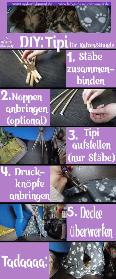 Maloutainment Fotografie DIY Do it yourself Kreativ Basteln Tier Hunde Katzen Wohnen Einrichten Moebelstueck Tippi Hoehle Platz Blog 5 Schritte Anleitung
