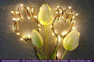 Maloutainment Fotografie DIY Rezepte Romane Essen Do it yourself Basteln Tulpen Fruehling Lichterketten Lampen basteln Dekoration fuer Garten Haus Wohnung Blumenstrauss Blueten