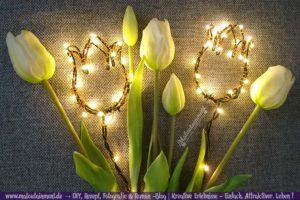 Lichtertulpen für Deko im Garten