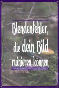 Maloutainment Fotografie DIY Rezepte Romane Essen Do it yourself Blende Bokeh Schaerfe Unschaerfe Fehler Tipps Tiere Wald Pflanzen Pilz Natur Makro