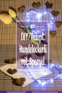 Maloutainment Fotografie DIY Rezepte Romane Essen Do it yourself Backen Leckerli Hundefutter Hund Blog Bloggerin Fruehling Delikatesse Spargel Pute Feldsalat Backofen Selbermachen