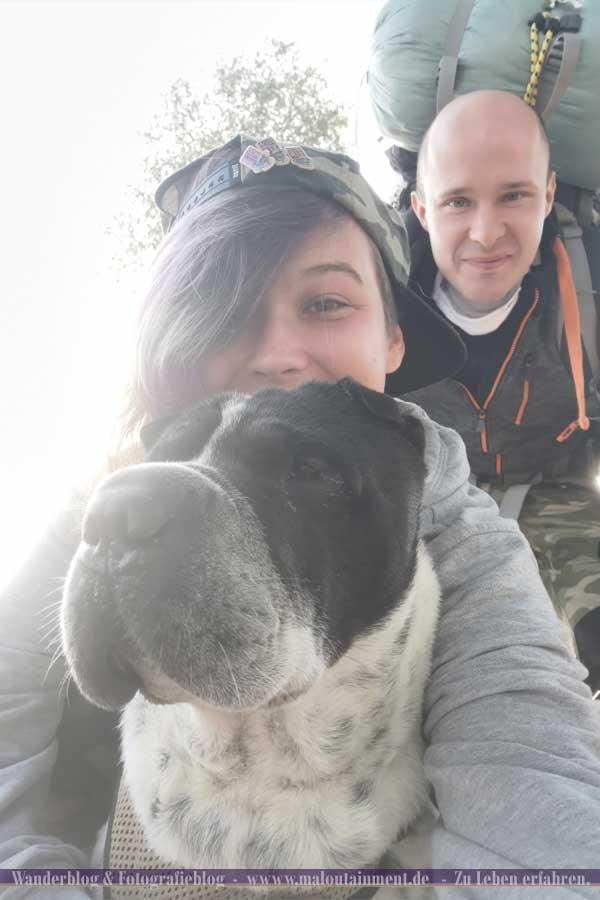 Wanderer auf dem Heidschnuckenweg mit Hund und Pins
