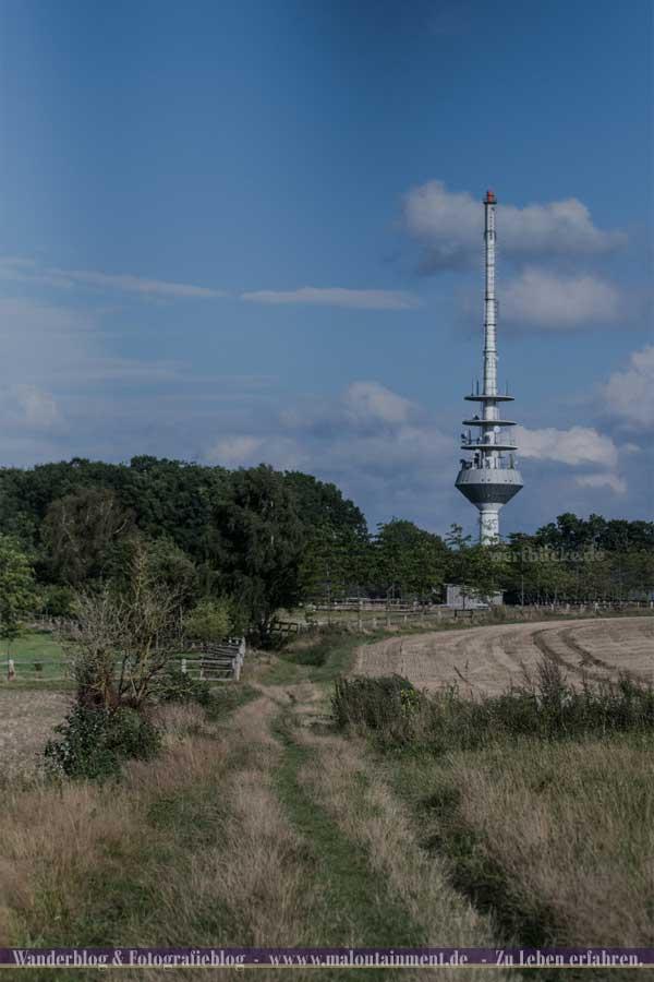 Turm auf dem Heidschnuckenweg