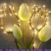 Tulpen aus Lichterketten für Deko